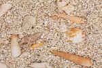 Bodengrund trocken