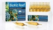 Prodibio BioKit Reef 30 Ampullen